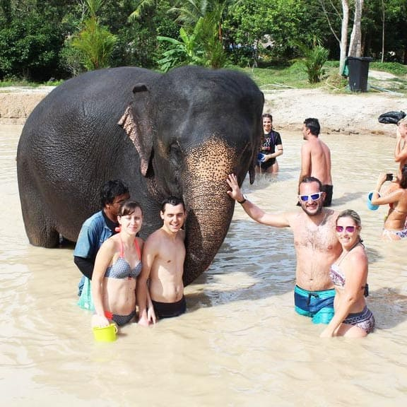 green elephant sanctuary half day tour phuket